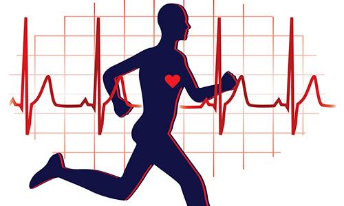 Bild mit Läufer und Herzschlag