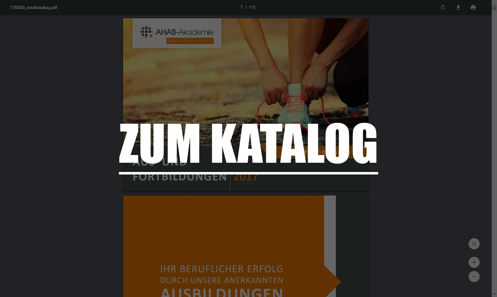Screenshot vom Katalog